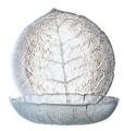 Puddingteller ASPEN 14,5 cm Höhe 36 mm - Durchmesser 145 mm Arcoroc