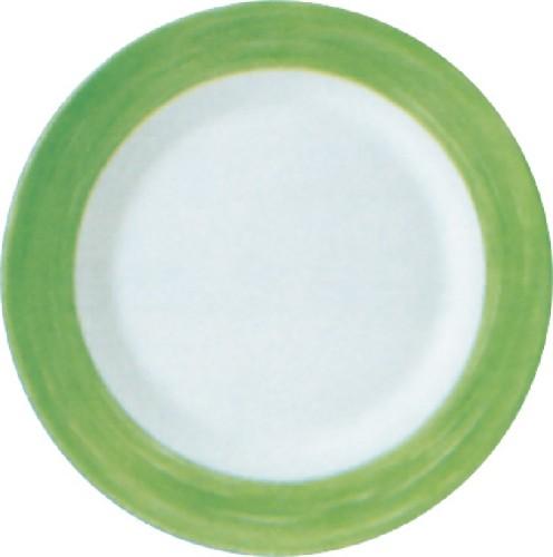 Speiseteller 25,4 cm Form Brush - Green / Grün Arcoroc